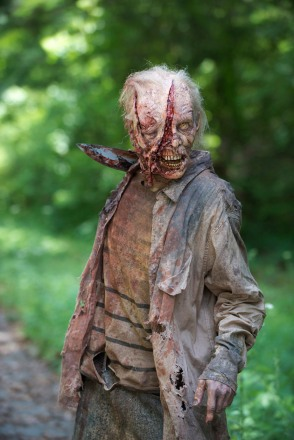 zombie_-_the_walking_dead_6_-BAJA_fox_(5).jpg