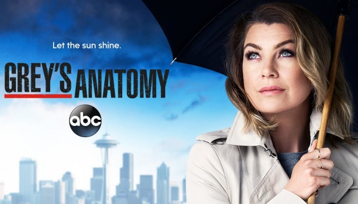 greys-season13-cancelled-renewed-700x400.jpg