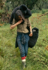 Dian Fossey muerte en la niebla - National Geographic (2).jpg