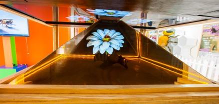APRENDE SOBRE LAS ABEJAS EN EL MUSEO TEZOZÓMOC DEL IPN (2).jpg