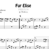 Revelan secretos musicales de Beethoven