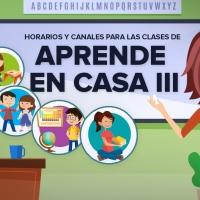 """""""Aprende en casa se les fue de las manos"""": María Meléndez Ávila"""